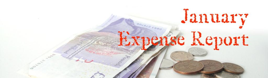 January Expense Report
