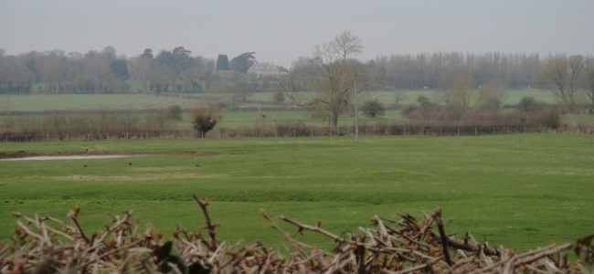 Field near Wolverton