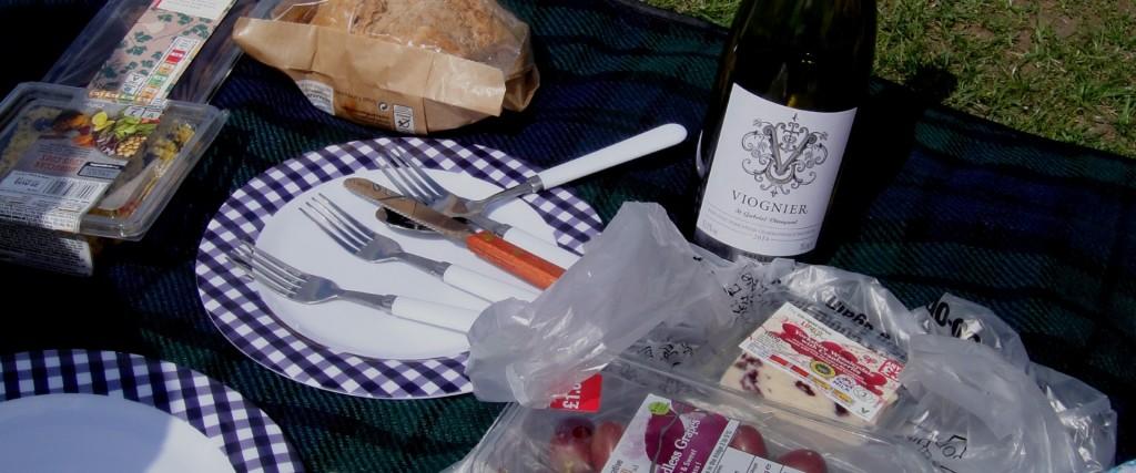 picnic bg