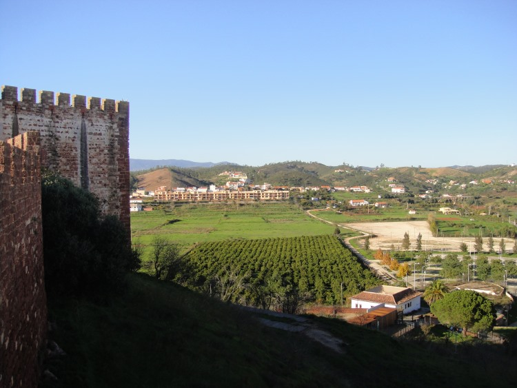 View of orange groves from Silves Castle